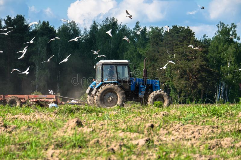 Un trattore ara il campo un giorno soleggiato luminoso Paesaggio rurale della sorgente immagini stock
