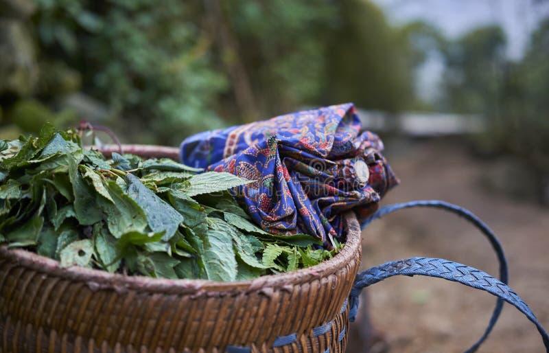Un travail du ` s de jour dans un village image libre de droits