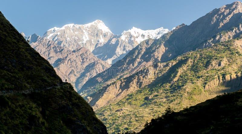 Un trekker en el circuito de Manaslu con el viiew del soporte nevado Manaslu 8 156 metros Himalaya, sunnyat Manaslu, Gorkha, Nepa foto de archivo