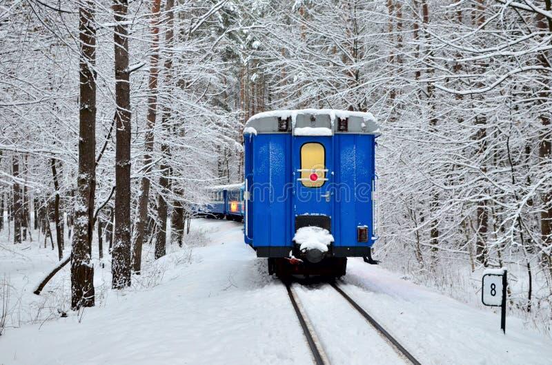 Un tren viejo del vintage con paseos azules hermosos de los vehículos de pasajeros por el carril a través de un bosque nevoso del imágenes de archivo libres de regalías