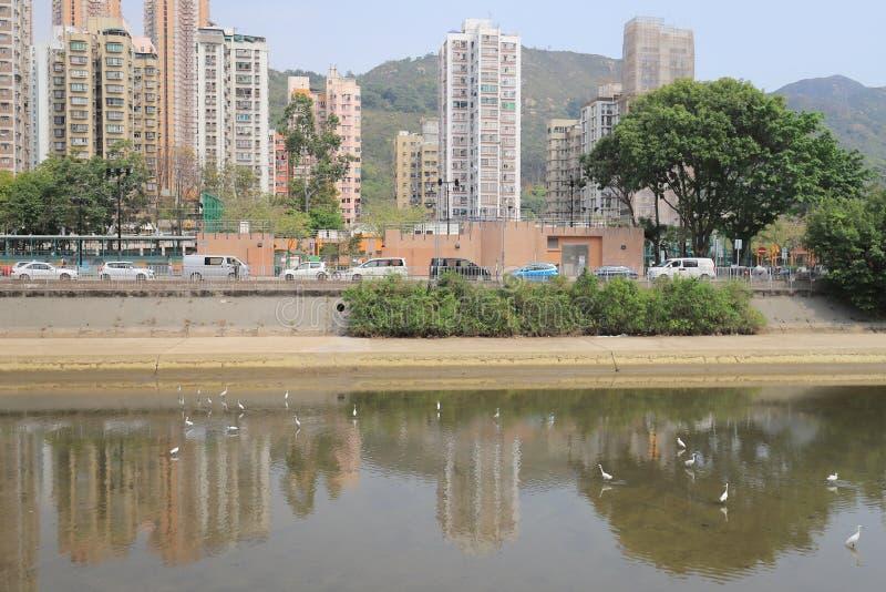 un Tuen Mun Riverside Park a tempo di giorno di Tuen MU fotografia stock libera da diritti