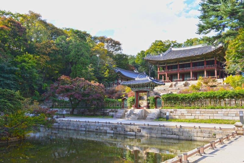Un turista che cammina in una costruzione nel giardino segreto di Changdeokgung, Seoul fotografia stock