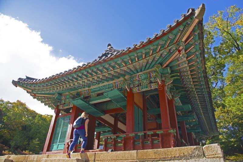 Un turista che cammina in una costruzione nel giardino segreto di Changdeokgung, Seoul fotografie stock libere da diritti