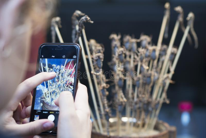 Un turista que toma una imagen de escorpiones y de seahorses fritos en los palillos en la calle de Wangfujing con un smartphone e imagen de archivo