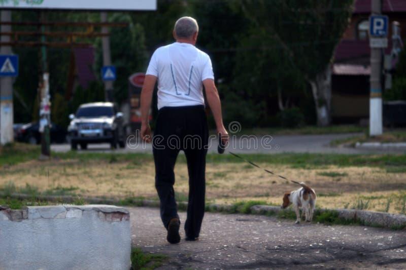 Un uomo anziano cammina con un cane sulla strada fotografie stock libere da diritti