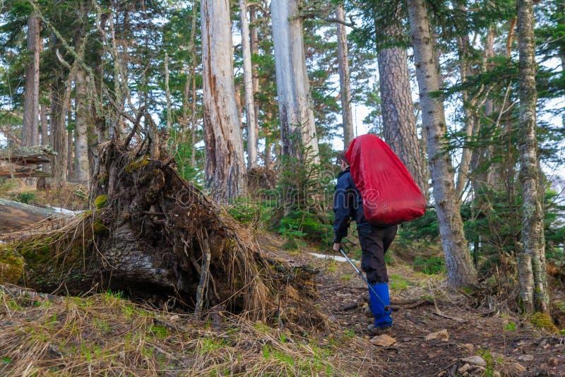 Un uomo in autunno di giorno della montagna fotografie stock libere da diritti