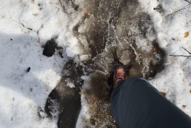 Un uomo cammina in stivali di gomma sopra neve di fusione immagini stock libere da diritti