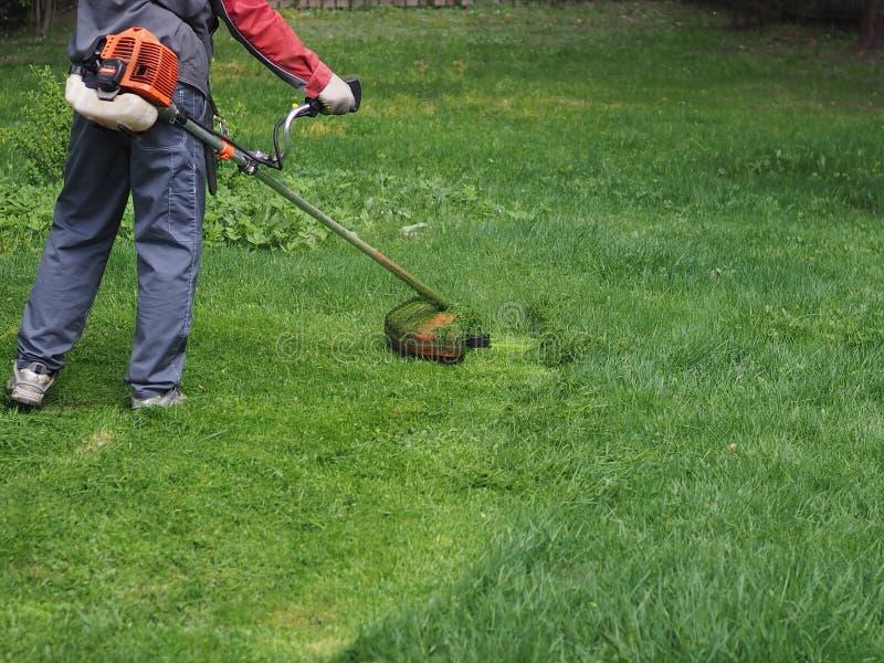 Un uomo con un falciatore della benzina falcia l'erba nel paese immagine stock