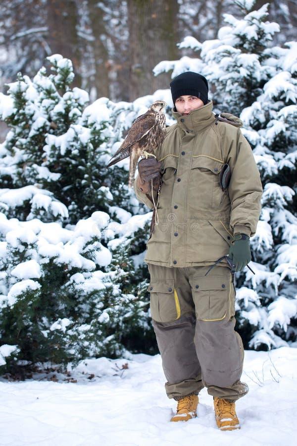 Un uomo con un falco nell'inverno fotografie stock