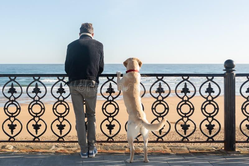 Un uomo con il suo cane che si appoggia un'inferriata che guarda il mare nei precedenti immagini stock