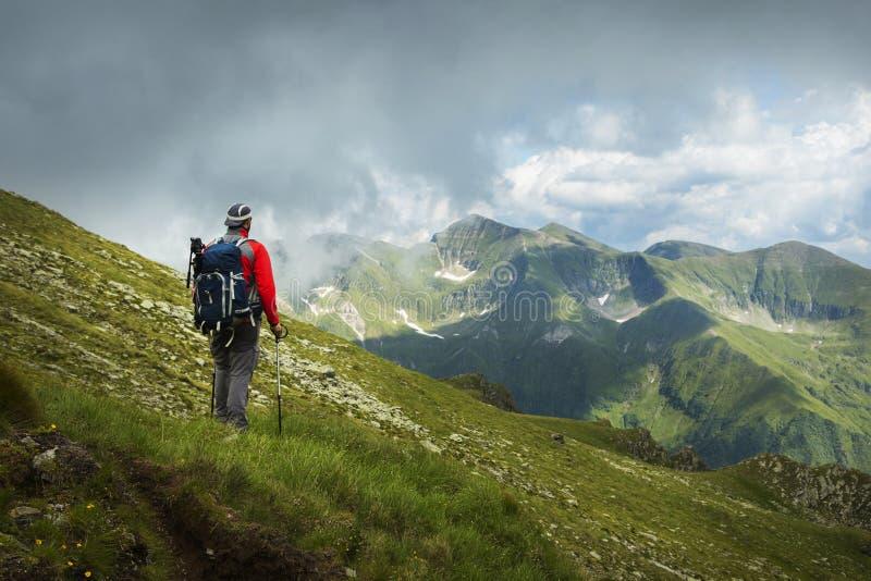 Download Un uomo d'escursione immagine stock. Immagine di esterno - 56878737