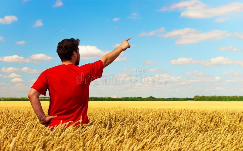 Un uomo dell'agricoltore che sta in un campo di grano, tirate il suo dito al cielo Composizione concettuale Copyspace immagini stock libere da diritti