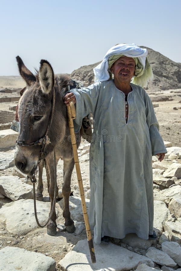 Un uomo egiziano ed il suo asino a Saqqara nell'Egitto fotografie stock libere da diritti