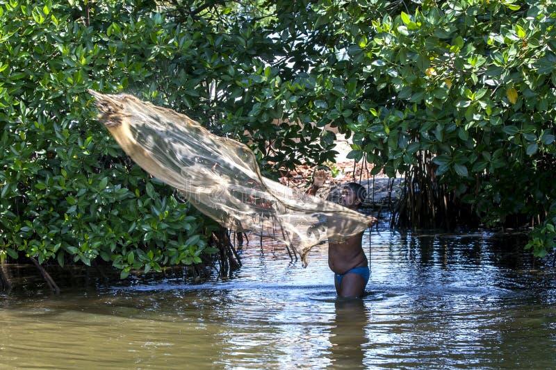Un uomo fonde la sua rete da pesca in una laguna a Negombo nello Sri Lanka fotografia stock libera da diritti