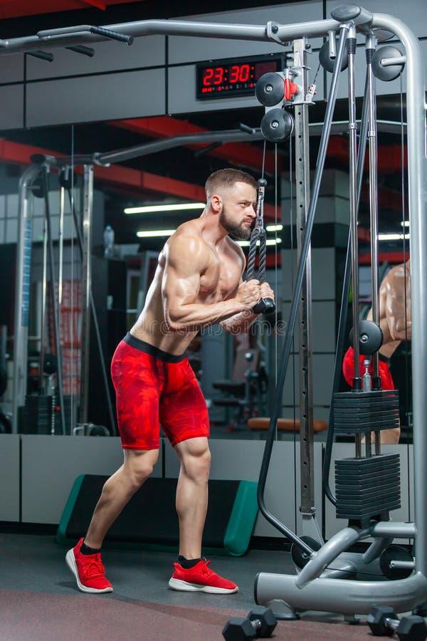 Un uomo muscoloso forte sta addestrando i suoi tricipiti usando attrezzature sportive nella palestra moderna fotografia stock