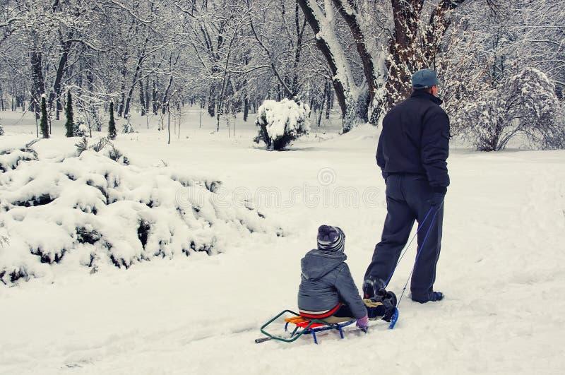 Un uomo porta un bambino in una slitta Inverno nel parco immagine stock libera da diritti