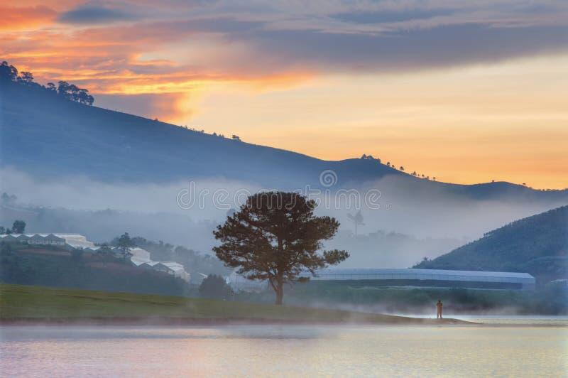 Un uomo solo con la riflessione sola dell'albero sul lago, la magia del cielo e le nuvole all'alba fotografia stock libera da diritti