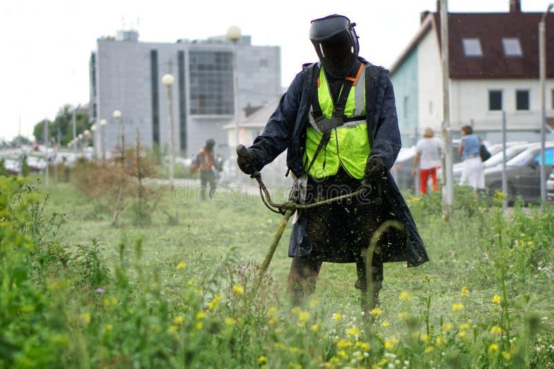 Un uomo in un vestito protettivo falcia l'erba con una falciatrice portatile tenuta in mano Miglioramento ed economia di grande c fotografia stock libera da diritti