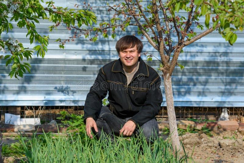 Un uomo vicino al giardino con aglio verde al suo cottage di estate fotografie stock