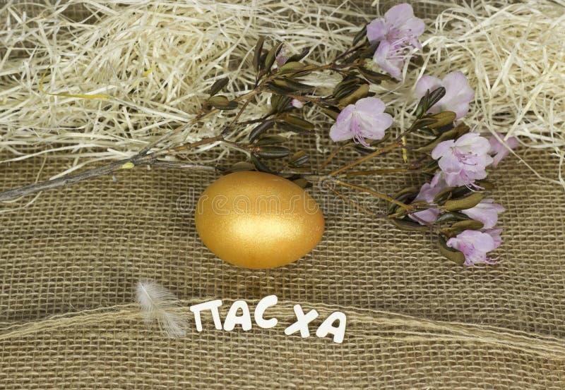 Un uovo di Pasqua fotografia stock libera da diritti