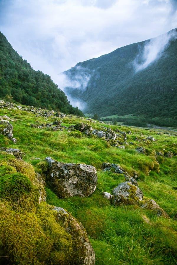 Un valle verde hermoso de la montaña cerca de Rosendal en Noruega Paisaje del otoño en el parque nacional de Folgefonna foto de archivo