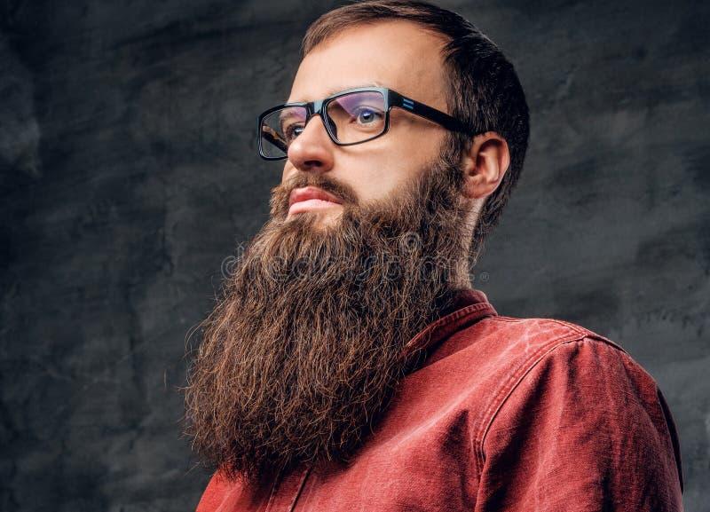Un varón barbudo en lentes se vistió en una camisa roja fotos de archivo