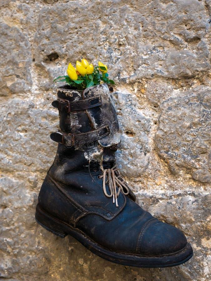 Un vase à fleur original image libre de droits