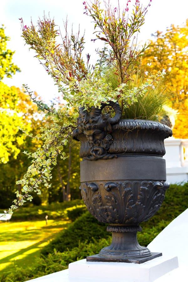 Un vase avec les chiffres antiques orne le parc d'automne images libres de droits