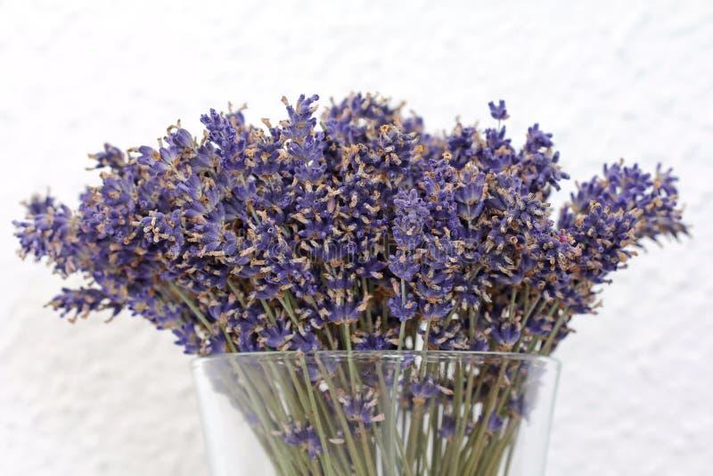Un vase de fleurs sèches de lavande photo stock