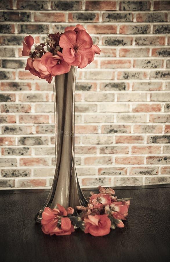 Un vaso alto con i gerani immagine stock