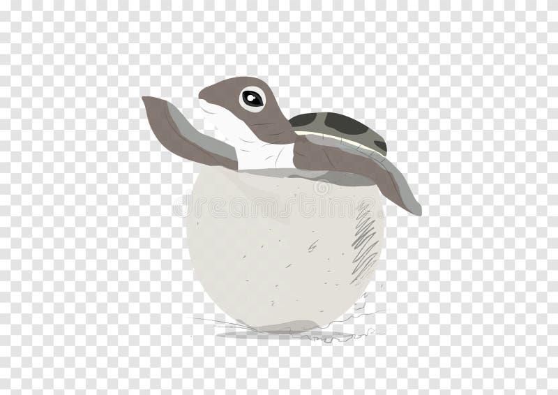 Un vector de la portilla de la tortuga de mar en el fondo de la transparencia, endecha y hacia fuera del huevo ilustración del vector