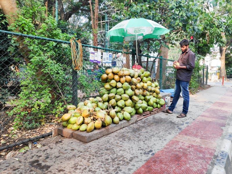 Un vendeur de noix de coco de rue en Inde photographie stock libre de droits