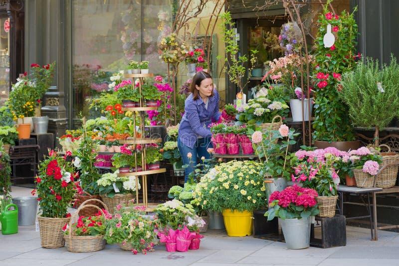 Un venditore della donna sistema i fiori all'entrata ad un negozio di fiore, Vienna, Austria fotografie stock
