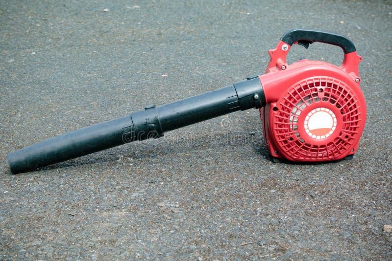 Un ventilatore di foglia della benzina immagine stock libera da diritti