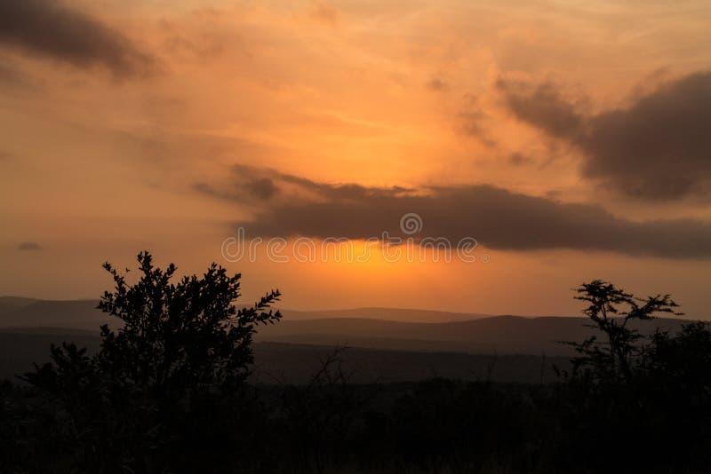 Un vero tramonto sudafricano del cespuglio fotografia stock libera da diritti