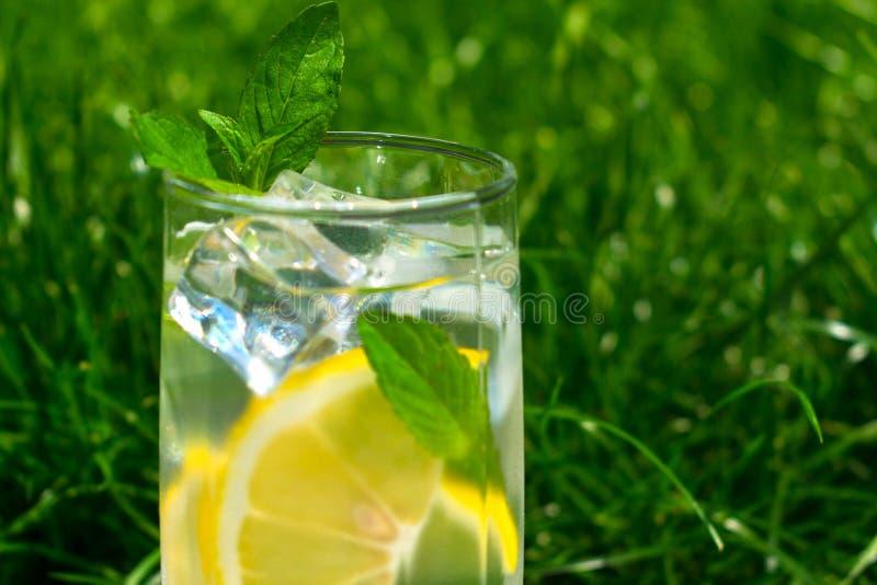 Un verre de l'eau avec le citron et la menthe sur le fond de l'herbe de vert fraîche d'été Boisson de refroidissement images libres de droits