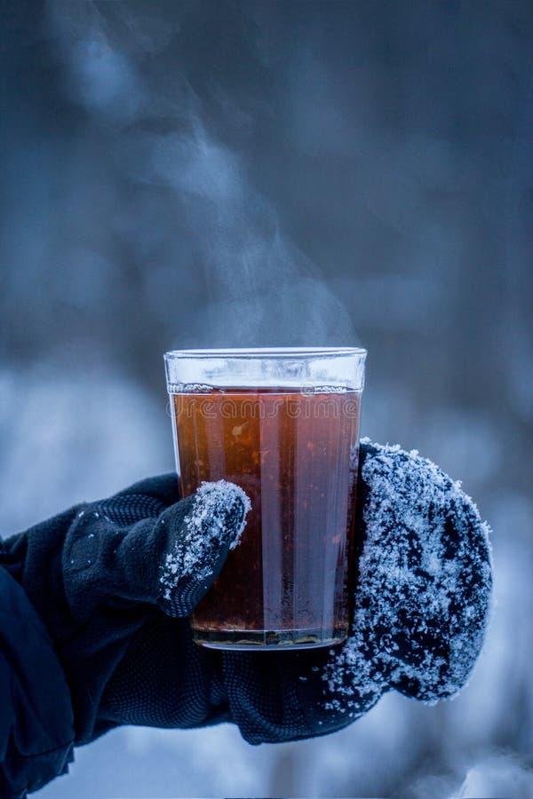 Un verre de thé chaud dans le froid photographie stock libre de droits