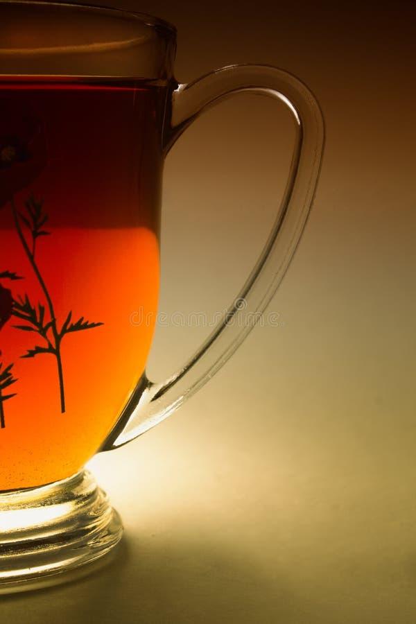 Un verre de thé sur le fond blanc photographie stock libre de droits