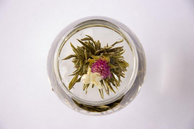 Un vetro del tè di fioritura dell'artigianale fotografia stock