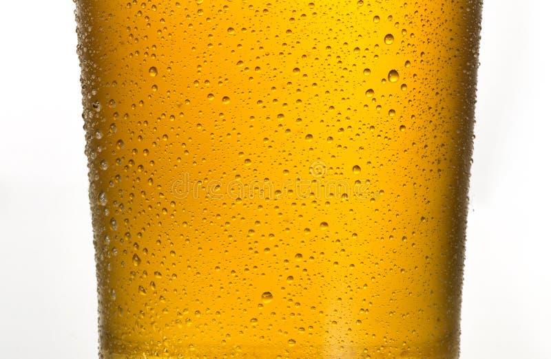 Un vetro della birra fresca dell'oro immagine stock