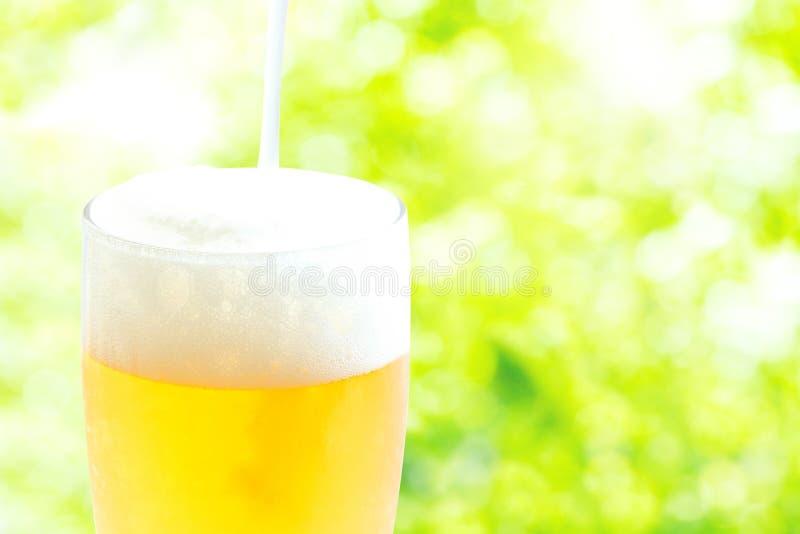 Un vetro di birra con il fondo dell'erba immagini stock libere da diritti
