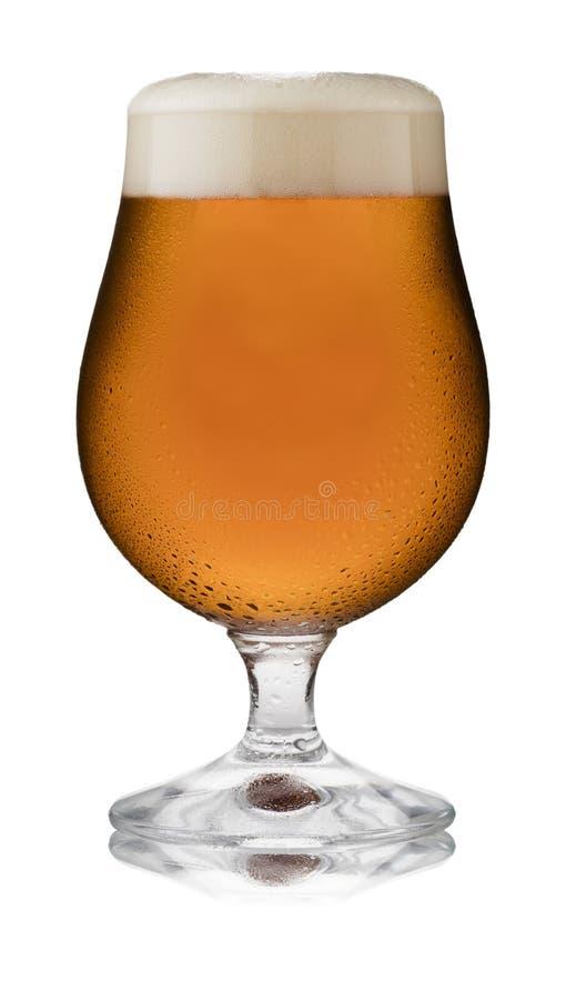 Un vetro di rinfresco di birra inglese tradizionale, in un vetro della goletta, con condensazione immagine stock libera da diritti