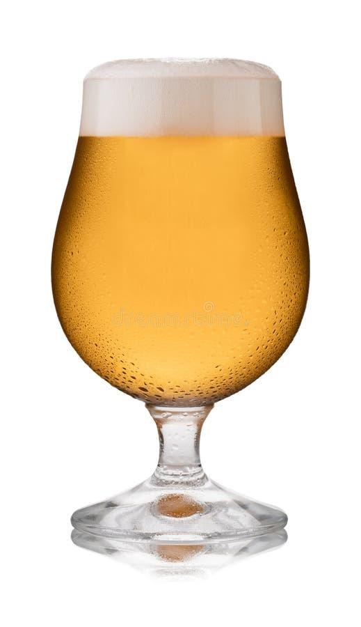 Un vetro di rinfresco di sidro, in un vetro della goletta, con condensazione fotografie stock
