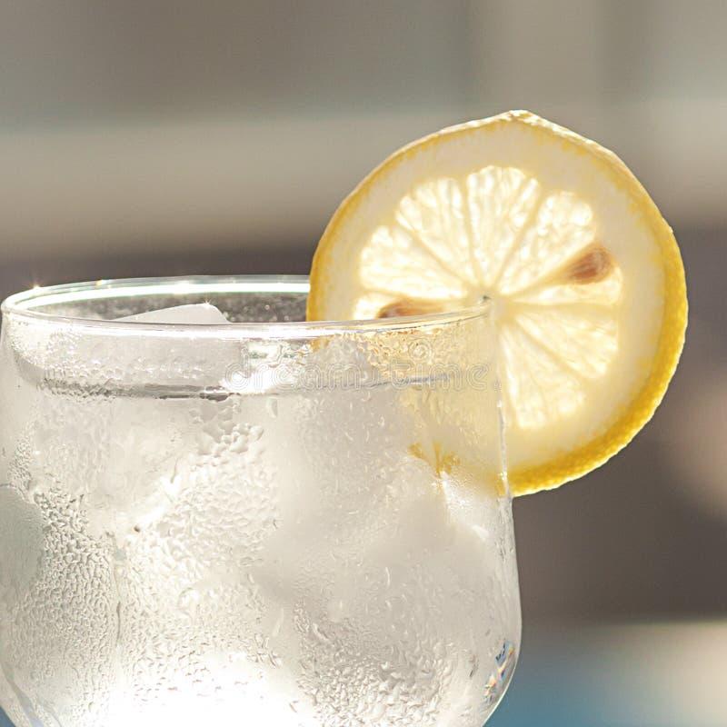 Un vetro di vino con ghiaccio immagini stock libere da diritti