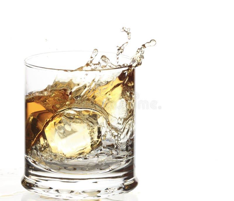 Un vetro di whisky con la spruzzata del cubo di ghiaccio fotografia stock libera da diritti