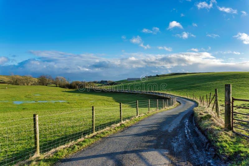 Un vicolo del paese di bobina che passa attraverso i campi verdi fotografie stock libere da diritti