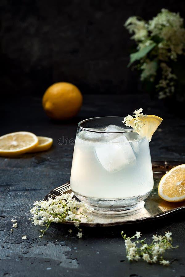 Un vidrio de ginebra hecha en casa del elderflower amarga o de limonada adornada con elderflowers recientemente escogidos imágenes de archivo libres de regalías