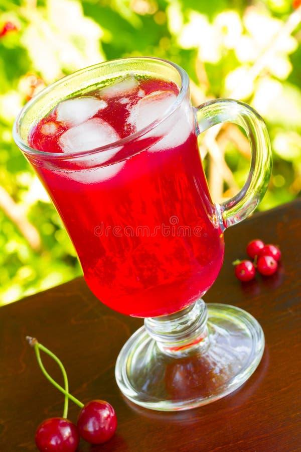 Un vidrio de jugo rojo de la cereza con los cubos de hielo y cerezas y pasas rojas en un fondo natural imagen de archivo