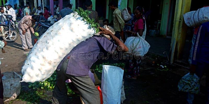Un vieil homme indien a reporté le sac végétal au marché de produit d'agriculture photos stock