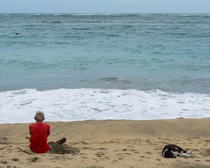 Un viejo hombre que se sienta en la arena de la playa mientras que mira hacia fuera el mar acompañado por un perro blanco y negro foto de archivo libre de regalías